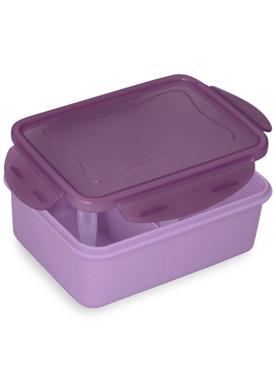 No Mess Lunch Box